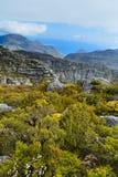 岩石和风景在桌山顶部 免版税图库摄影
