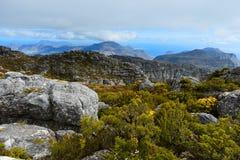 岩石和风景在桌山,开普敦顶部 库存图片