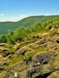 岩石和高草在绿色山 库存照片