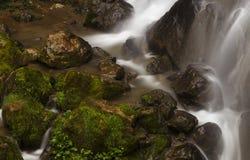 岩石和绿草在瀑布附近 免版税库存照片