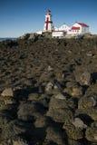 岩石围拢的加拿大灯塔盖在海草在低潮期间 免版税库存照片