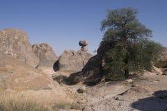 岩石国家公园岩层城市 库存图片