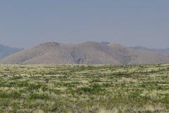 从岩石国家公园,新墨西哥城市的风景看法 图库摄影
