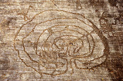 岩石图画在Valcamonica -迷宫 免版税库存照片