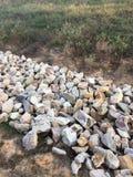 岩石在公园 库存图片