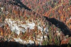 岩石在日落的秋天森林里在Harmanec,斯洛伐克, decid 库存图片