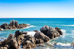 岩石在有棕色鹈鹕的海洋在距离 图库摄影