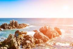 岩石在有棕色鹈鹕的海洋在距离 免版税库存照片