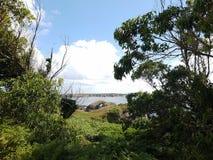 岩石在有自然风景的海 免版税库存图片