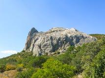 岩石在森林里 免版税库存图片