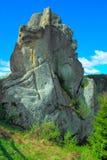 岩石在稀奇的形式森林里反对天空的 库存图片