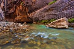 岩石在维尔京河在锡安国家公园变窄 免版税库存照片
