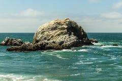 岩石在水中 库存图片