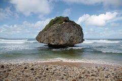 岩石在巴巴多斯 免版税库存图片