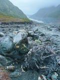 岩石在Fox冰川谷,新西兰的雨中 免版税图库摄影