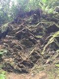 岩石在Gatlinburg 免版税库存图片