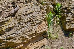 岩石地层 库存图片