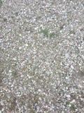 岩石地面,在家附近的地球 免版税库存照片
