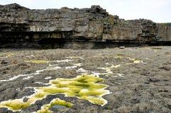 岩石墙壁和绿色水1 免版税库存图片