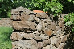 岩石墙壁在森林里 库存照片