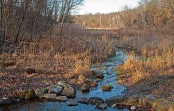 岩石小河在冬天 免版税库存图片