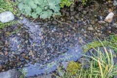 岩石小河床 库存图片