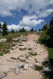 岩石山的路径 免版税库存图片