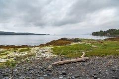 岩石岸在阿拉斯加 库存图片