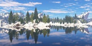 岩石岸的森林 免版税图库摄影