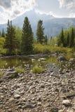 从岩石岸,三角叶杨小河,杰克逊Hole的Teton山 库存图片