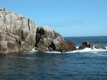 岩石岸-阿拉斯加 免版税库存图片