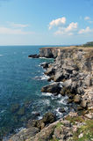岩石岸 库存图片