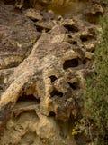 岩石峡谷峭壁 免版税库存照片