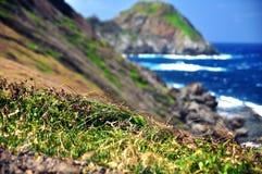 由海的岩石峭壁 免版税库存照片