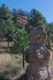 岩石巨型独石观看他的森林 库存图片