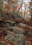 岩石平板-秋天 库存照片