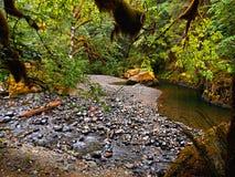 岩石弯 图库摄影