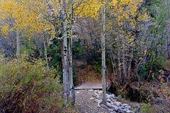 岩石桥梁在秋天 库存照片