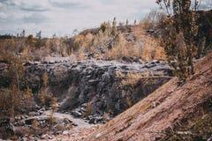 岩石森林 库存照片