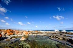 岩石水池美丽的景色在Bosbokduin自然保护的在寂静的海湾,西开普省省,南非 免版税图库摄影