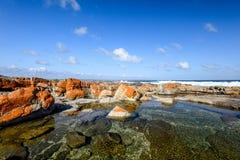 岩石水池美丽的景色在Bosbokduin自然保护的在寂静的海湾,西开普省省,南非 免版税库存图片