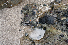 岩石沙子 免版税库存图片