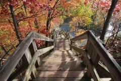岩石河保留,克利夫兰Metroparks 库存图片