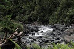 岩石河 库存照片