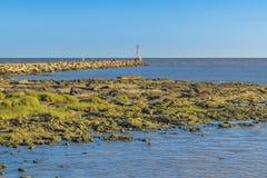 岩石沿海场面,蒙得维的亚,乌拉圭 免版税库存图片
