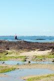 岩石海岸不列塔尼法国 库存照片