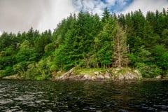 岩石海岸和一个森林海湾Tay湖银行的  免版税库存图片