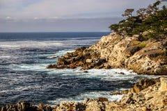 岩石海岸线在加利福尼亚 库存图片