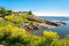 岩石海岸线在芬兰堡,赫尔辛基海岛,在夏天下午期间 库存照片