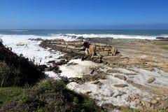 岩石海岸线在风暴河在Tsitsikamma国家公园,南非 免版税库存照片